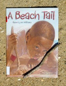 beach_books_a_beach_tail-541x700