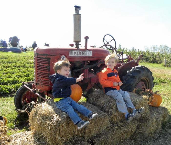 pumpkin_tractor