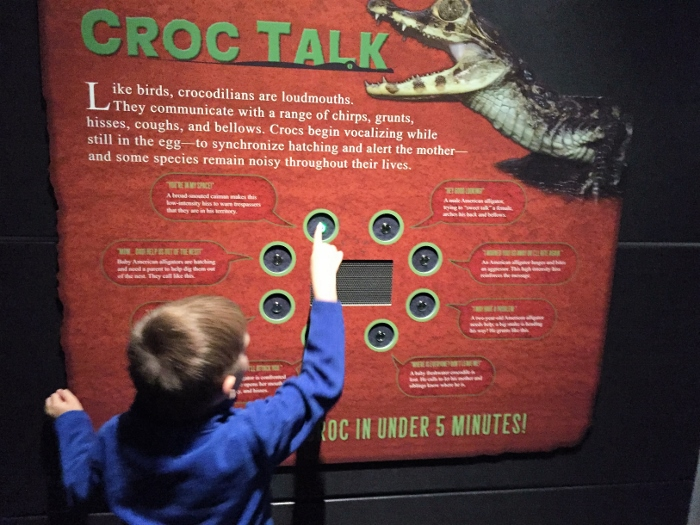 museum_croctalk