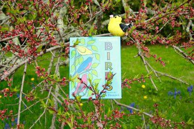 ReadingEveryDay_Birding_4