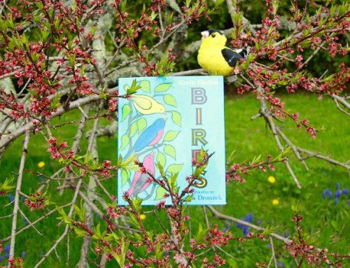 Birding with Books